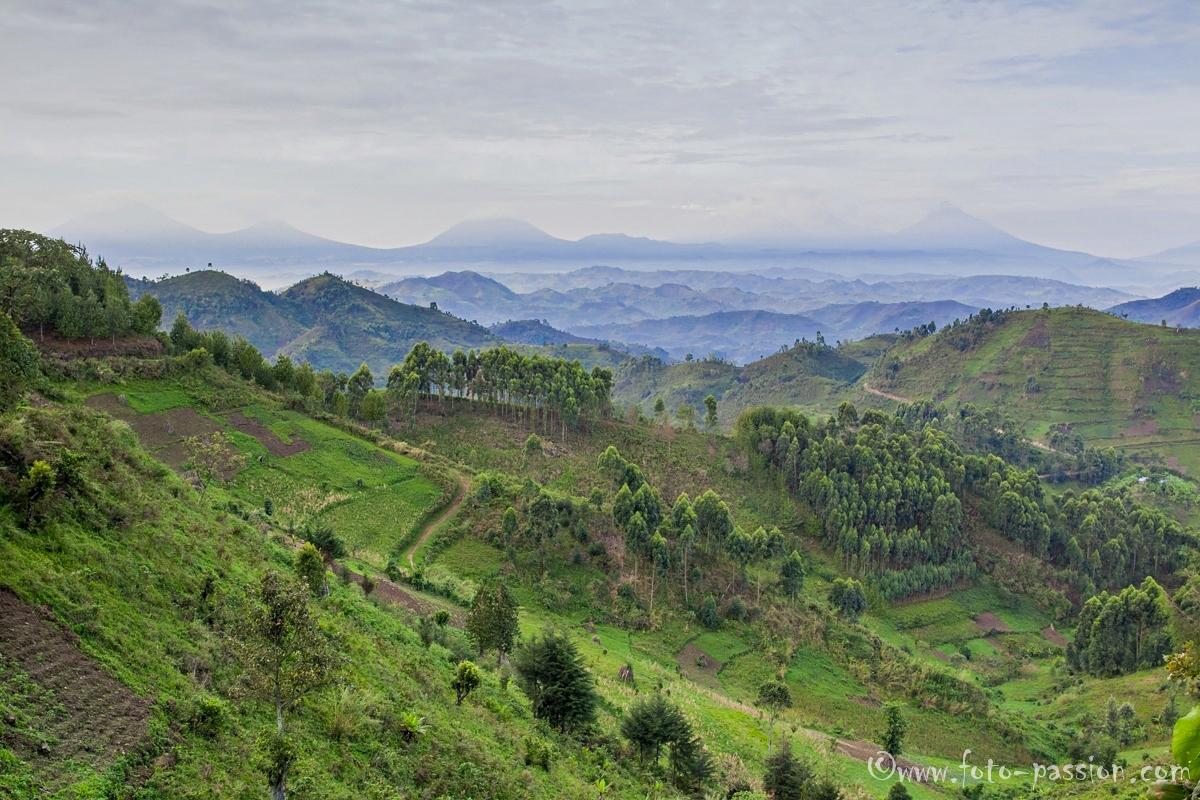 galerie reisen ruanda landschaft