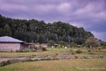 Gorillas Nest Lodge Ruhengeri im Distrikt Musanze
