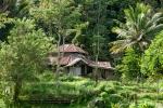 Indonesien - Insel Sulawesi