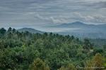 Insel Sulawesi