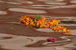 Opfergabe - Blumenkette im Ganges